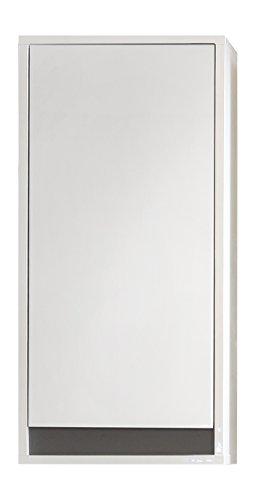 trendteam smart living Badezimmer Hängeschrank Wandschrank Sol, 35 x 73 x 23 cm in Korpus