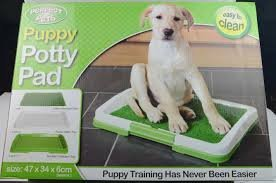 Puppy Potty Grass Mat Dog Trainer Indoor Pee Pad Training Patch Green by Pet -