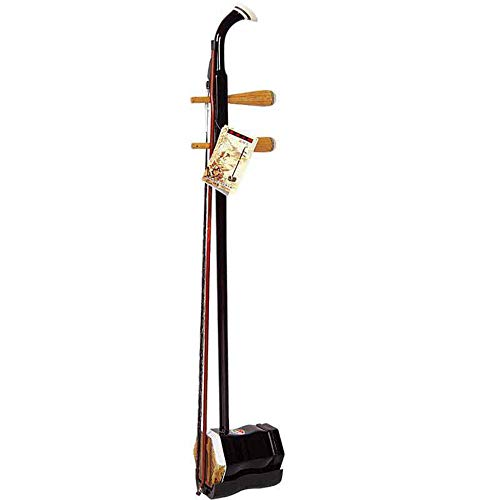 C Five Erhu Musikinstrumente Chinesisches Volksmusikinstrument Erwachsene Spielen Professionelle Kinder Anfänger Gute Geschenke (Farbe: Schwarz) -
