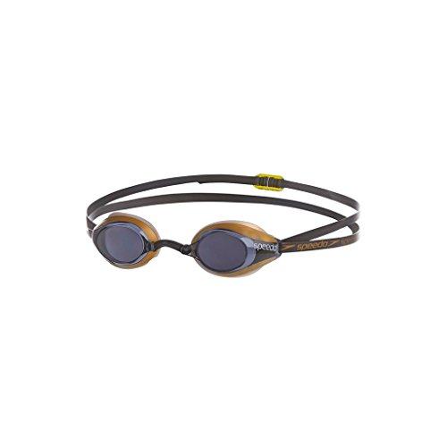 Speedo Erwachsene Schwimmbrille Speedsocket Polarised, Blau (Blau/Gold), One Size, 8-084367054Onesz