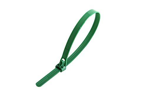 Gocableties Kabelbinder aus Nylon, wiederverwendbar, 250 mm x 7,6 mm, Grün, 100 Stück (Nylon Kabelbinder Grün)
