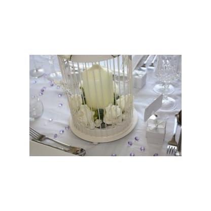 Cream Bird Cage (20 x 20 x 44.5cm) 3
