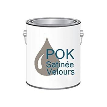 Peinture Acrylique Pour Murs Satin Lessivable Taupe Chocolatée Pok Satin 10 L Grille Offerte