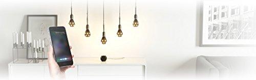 nanoleaf Ivy Smarter LED-Kit: Apple Home-Kit Beleuchtungs-Set - 3