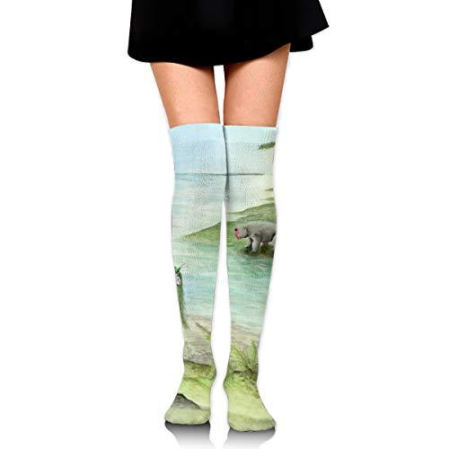 Kostüm Fluss - Bidetu Stiele ein Insekt am Ufer eines Flusses in der Antarktis über Knie lange Socke Oberschenkel hohe Socken Mädchen Socken niedlichen Kostüm Strümpfe 25,5 Zoll