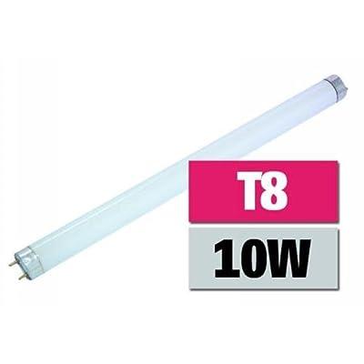 T8-Neonröhre, 10 Watt, 33cm passend für 321-004 von ETT bei Lampenhans.de