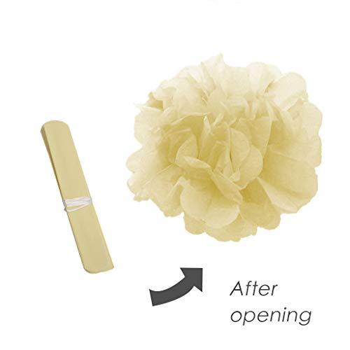 Seidenpapier Pompoms Apricot 20 Stück DIY Papierkugeln Wabenbälle Lampions Girlanden Dekoration 6 inch Partyraum Papier Kugel-Blume Für die Hochzeit Geburtstag VNEIRW (D)