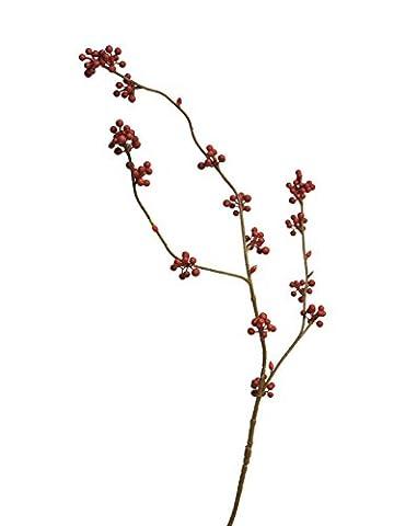 Branche de baies, rouge