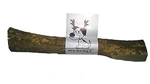 """1 morceau de bois de cerf à mâcher,pour les dents de votre petit chien """"M"""""""