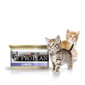 PRO-Plan Gattini Latt. Mousse Po/Fe Gr. 85