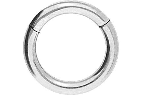 PIERCINGLINE Titan Segmentring Clicker   Piercing ✔ Septum ✔ Tragus ✔ Helix ✔   Farb & Größenauswahl (Ein-stein-ring)