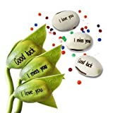 Happy GiftMart Magic Seeds Message Beans...