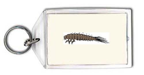 porte-cle-larve
