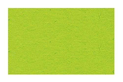 Ursus 3774651 - Cartulina (DIN A4, 300 g/m², 50 Hojas), Color Verde Claro