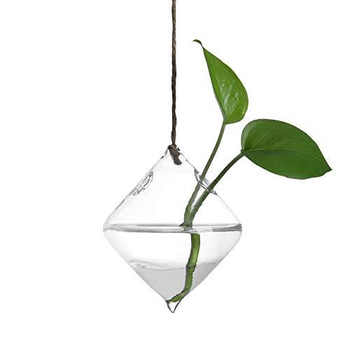 Gaddrt plant trasparente vaso creativo appeso palla di vetro vaso di fiori vaso terrario contenitore per la festa nuziale home decor c