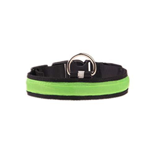 Cosanter 1 Stück LED-Licht Hundehalsband Große und Kleine Hunde Haustier Kragen Grün Größe S -