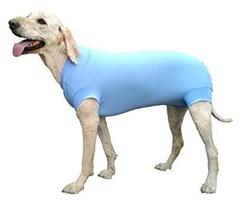VetMedWear Neuer Anzug, Schutzkleidung Regenerationsanzug Wundverband Schutz After Dog Operation, Hot Spots Skin Disease. E-Collar Alternative Hundewunde Hund nach Operationen tragen, M