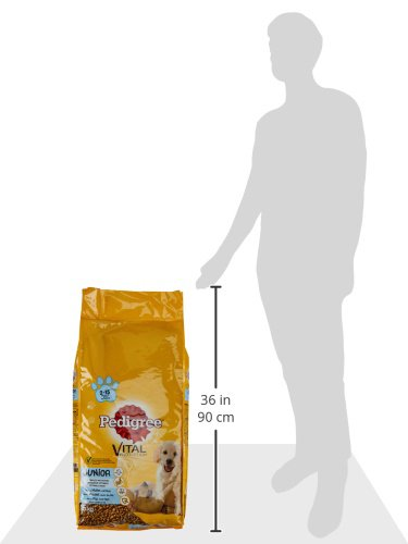 Pedigree Junior Medium Hundefutter Huhn und Reis, 1 Packung (1 x 15 kg) - 2