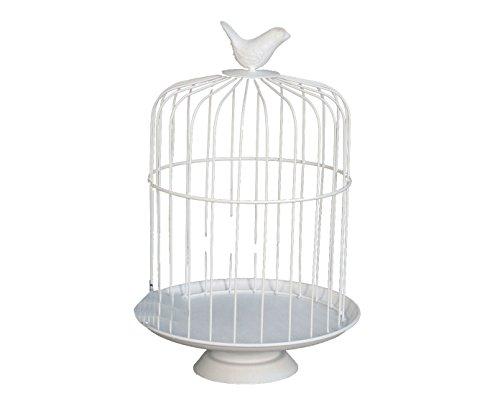 MONTEMAGGI Porte Bougies ou Plantes Grasses Présentoir Métal Blanc Type Shabby Chic Cage avec Oiseau aga607