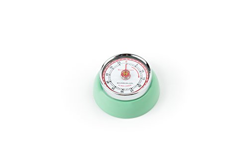 Fox Run Retro Mint Green 60 Min Kitchen Timer W/ Magnet Espresso Cake Roast New Fox Run Timer