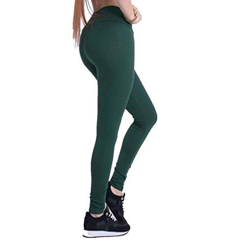 Jeggings Treggings Bleistifthose Stretchhose Damen Mädchen Hose Lang High Waist Skinny Slim Fit Schwarz Yoga Joggingshose Stretch Workout Fitness, Dunkelgrün, M ()
