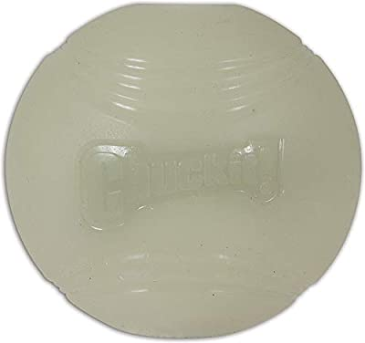 Chuckit! Max Glow Ball, Medium, 6.5 cm by Animal Instincts