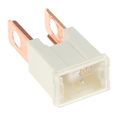 MagiDeal Plug-in Fusible General de Alta Capacidad para Coche Camión Remolque - 120A Blanco