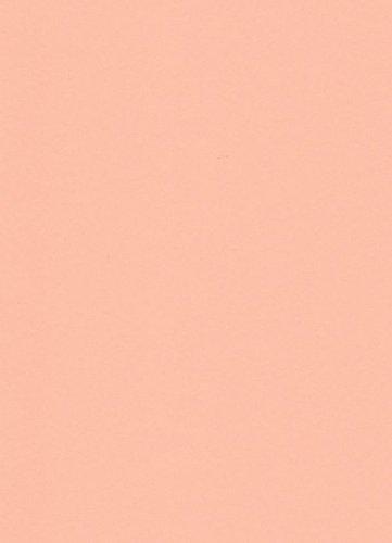 250 fogli DIN A5 albicocca colorato 160g/m² Ufficio di carta. Alta qualità colorata carta pizzo per copia Inkjet Laser. Prima classe per Flyers Newsletter poster fax in arrivo avvisi importanti sistemi di memo ordine di avvertimento