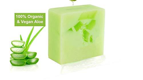 100% Aloe Vera Seife, Organisch & Vegan - Natürliche, Feuchtigkeitsspendende und hautpflegende Handseife, 100g | Erwachsene & Babypflege | Premium Qualität | Aloe Plus von Secret Essentials -