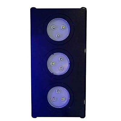 Dailyinshop Éclairage d'aquarium à LED pour Aquarium avec Commande Tactile pour récif de Corail (Couleur: Noir)