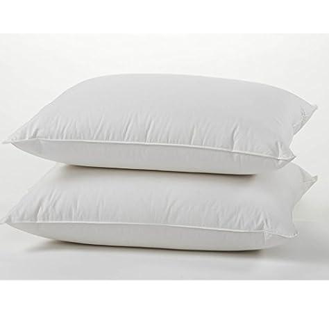 Goose Down Pillows 800 Fill Power