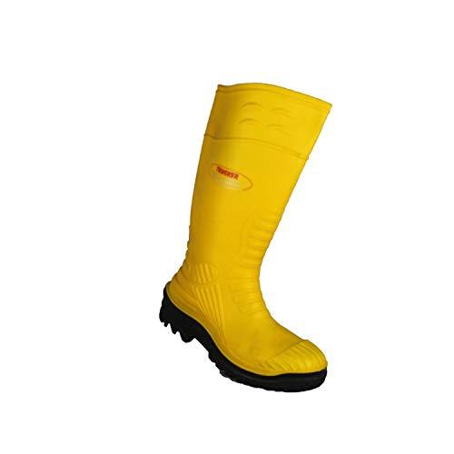 Chaussures de sécurité pour le secteur de la pêche - Safety Shoes Today