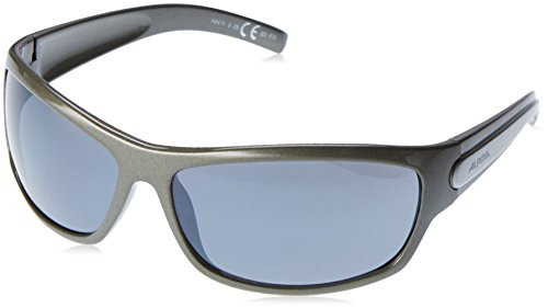 ALPINA Sonnenbrille A 60 Outdoorsport-brille, Tin, One Size