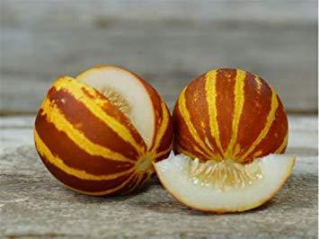 PlenTree 20 Samen, Rica Dulzura 132, süßer Melon, gestreift, kein GMO