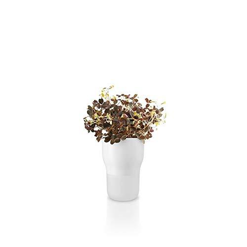 Eva Solo 568145.0 Kräutertopf, Selbstbewässerung, Sichtbarer Wasserstand, Ø 9 cm, Glas/Keramik, Chalk White, Weiß, 568145, 17, 6x12,4 cm