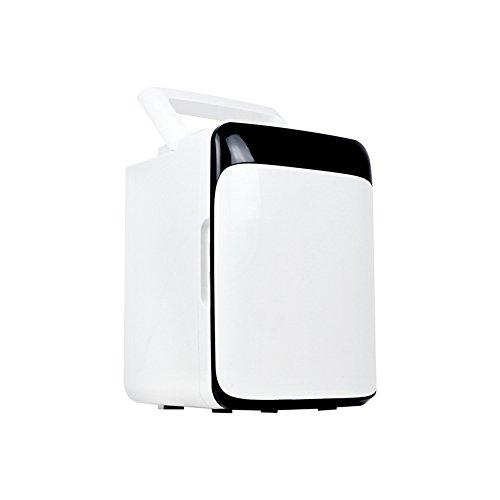 FJW Tragbarer Auto-Kühlschrank 10L Schnelle Kühlung 12V Autobenutzung 220V Familiennutzung Miniatur Auto Kühlschrank,Black