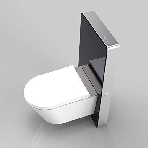 Sanitärmodul 805S mit Sensor für Wand-WC - Farbe Weiß oder Schwarz wählbar, Farbe:Schwarz