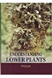 Understanding Lower Plants