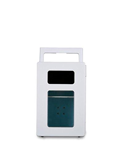CAPTIANKN Tragbare Elektrische 12V Kühler/Wärmer Auto Kühlschrank Personal Mini Kühlschrank - 10L Kapazität (10L)