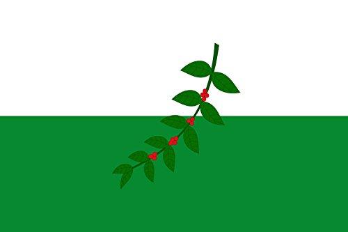 drapeau-la-celia-risaralda-municipio-de-la-celia-risaralda-20x30cm-pour-diplomat-flags-drapeau-de-vo