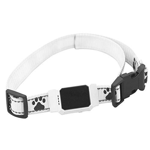 XDYFF Rastreador Tractive GPS para Perros y Gatos Track Tor Localizador con...