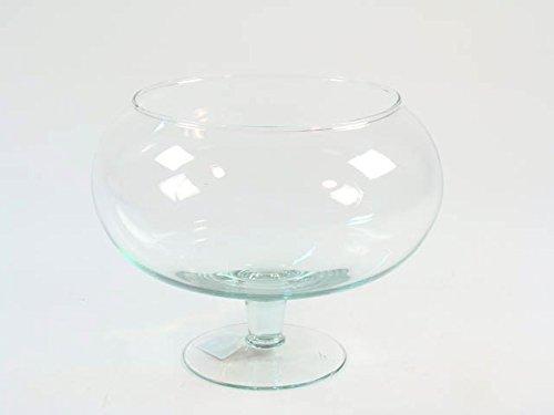 Takestop® Copa Ampolla pecera de cristal transparente Diam. 18cm H