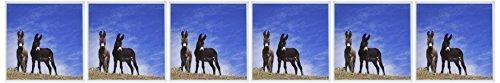 on New Mexiko USA Grußkarten, 6 Stück (gc_191473_1) ()
