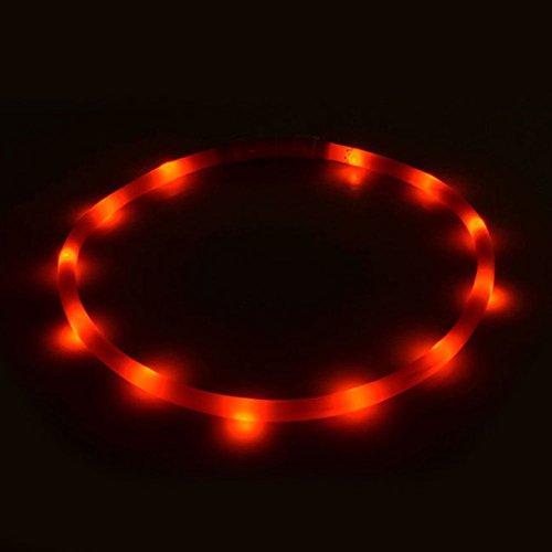 Halsband Hund Halsband Katze, wasserdicht superhelle LED wiederaufladbare Helle LED für Hunde, Produkte Tiere rot -