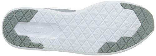 Puma Unisex-Erwachsene St Trainer Evo Sneakers Grau (quarry-white 03)