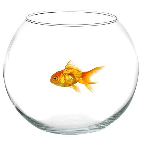 Takestop® ampolla boccia in vetro trasparente 35 cm acquario per pesci pesce rosso centrotavola vaschetta vaso porta fiore fiori candela matrimonio wedding confettata confetti caramellata caramelle