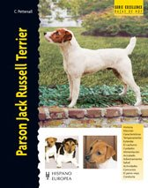 Parson Jack Russell Terrier (Excellence)