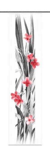 Home Fashion 87740–707decorativa Iowa–Panel japonés con impresión digital Panel rieles y sujeciones, 245x 60cm, diseño de flores, color rojo