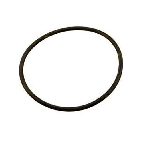 Hayward DEX360M 3,81 cm O-Ring pour les filtres à cartouche