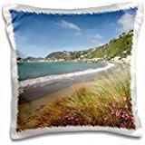 Beaches - New Zealand, Wellington Harbour, Worser Bay, Beach 16x16 inch Pillow Case